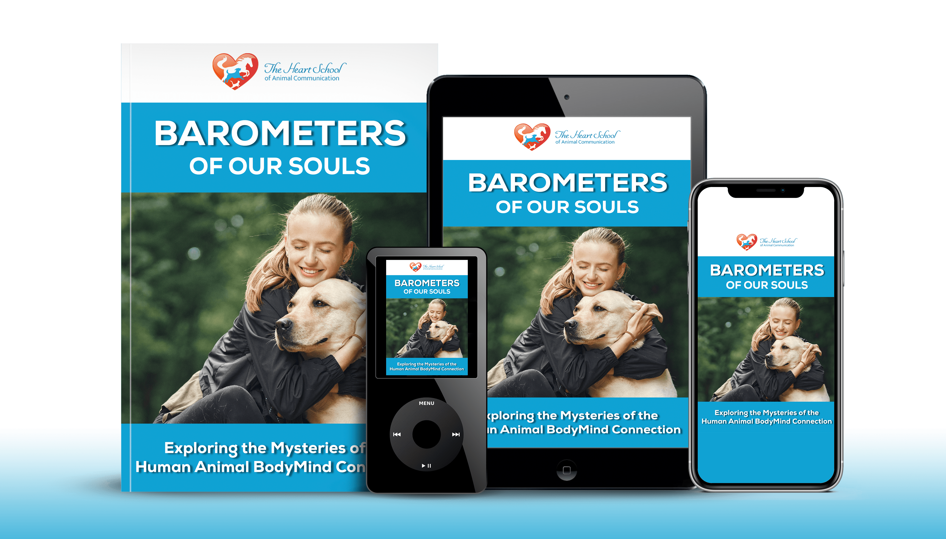 Barometers of our Souls course img