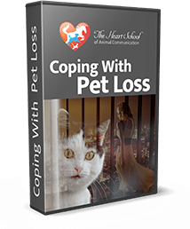 coping-with-pet-loss-val-heart
