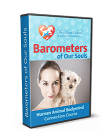 Barometers_of_our_souls human animal bodymind connection