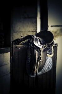 horse communication about saddles
