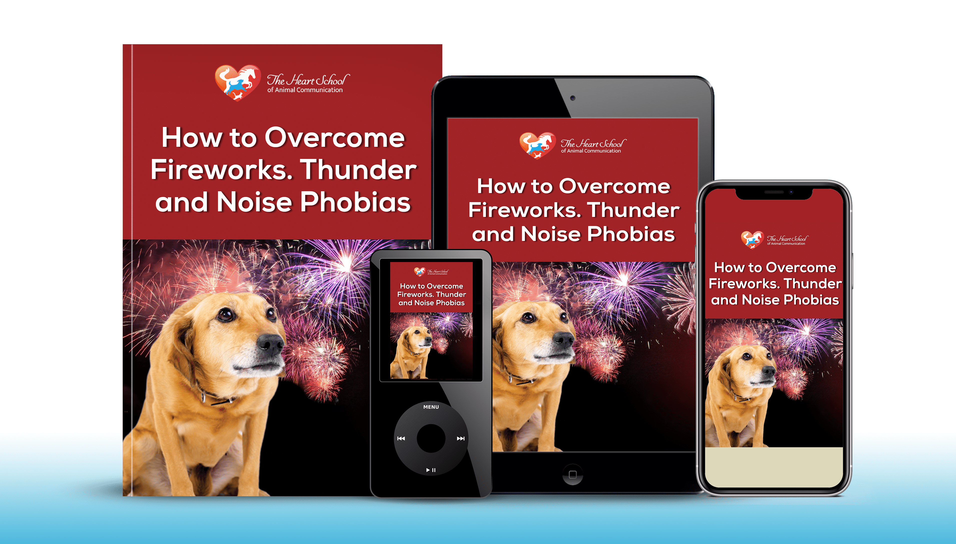 Helping Pets Overcome Fear of Fireworks course img