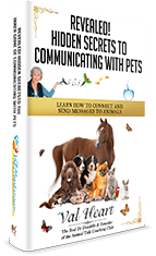 Hidden-Secrets-to-Communicating-with-Pets