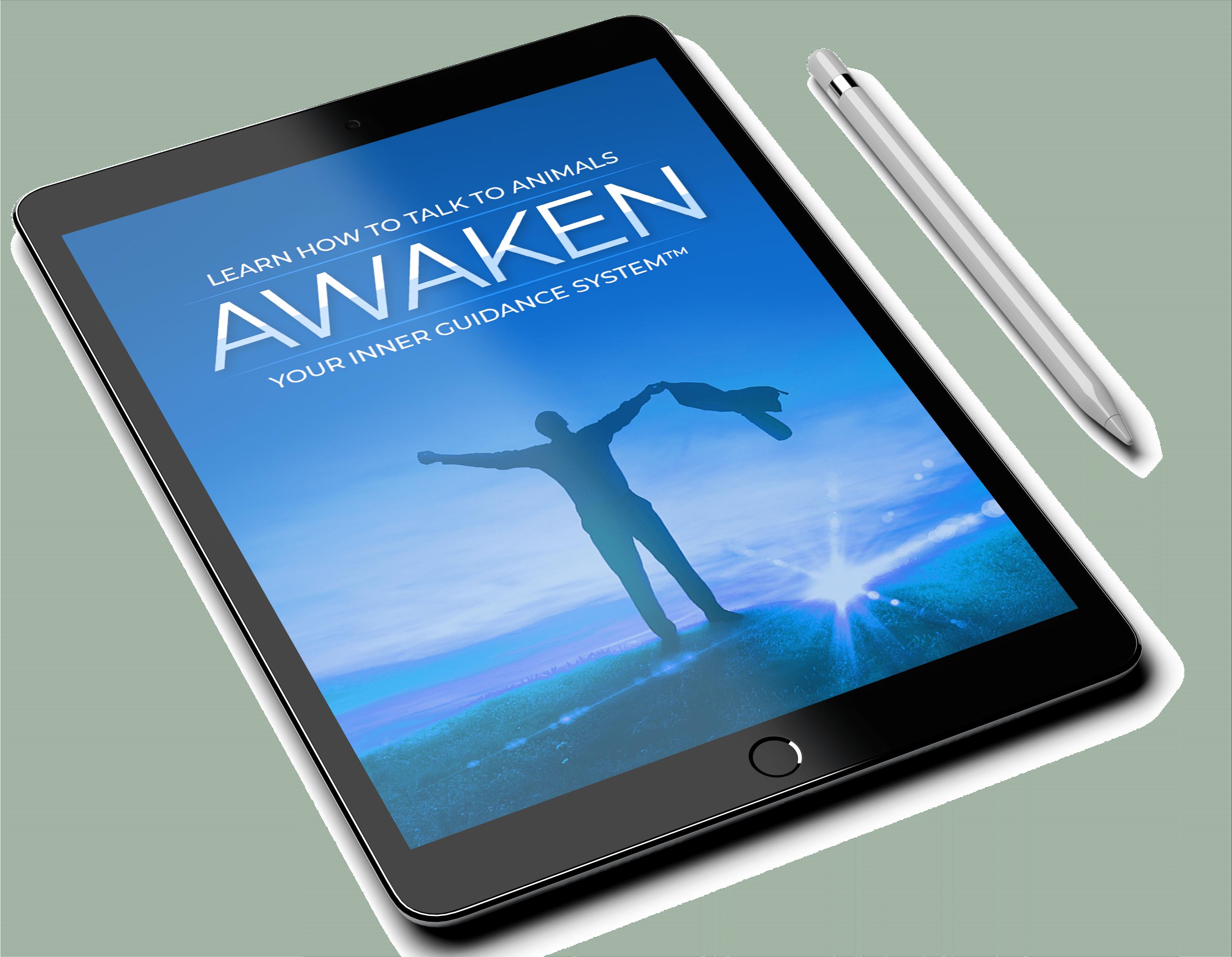 Awaken-Graphics
