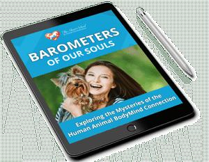barometer_pn