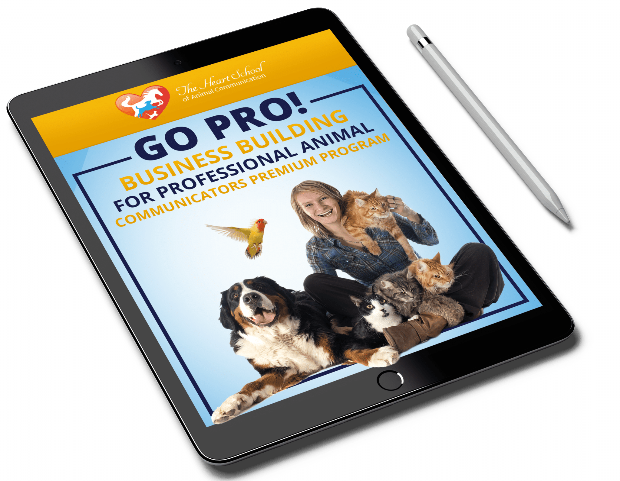 go-pro-premium-program-tablet-img