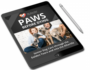 paws_before_pn