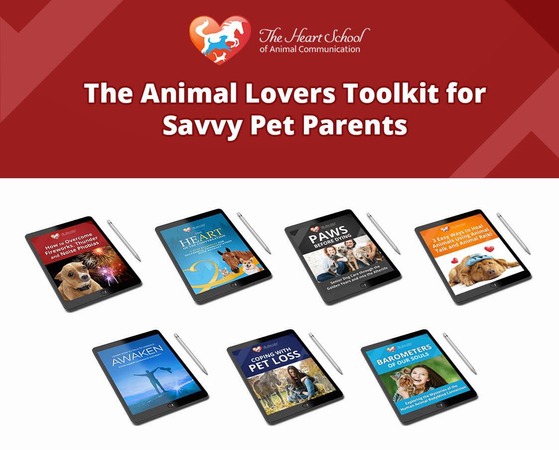 Animal Lovers Toolkit for Savvy Pet Parents