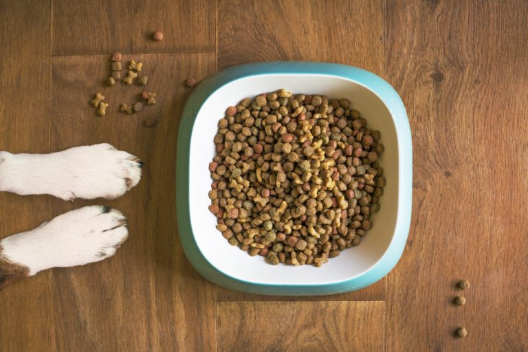 commercial pet food
