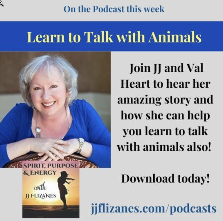 talk with animals