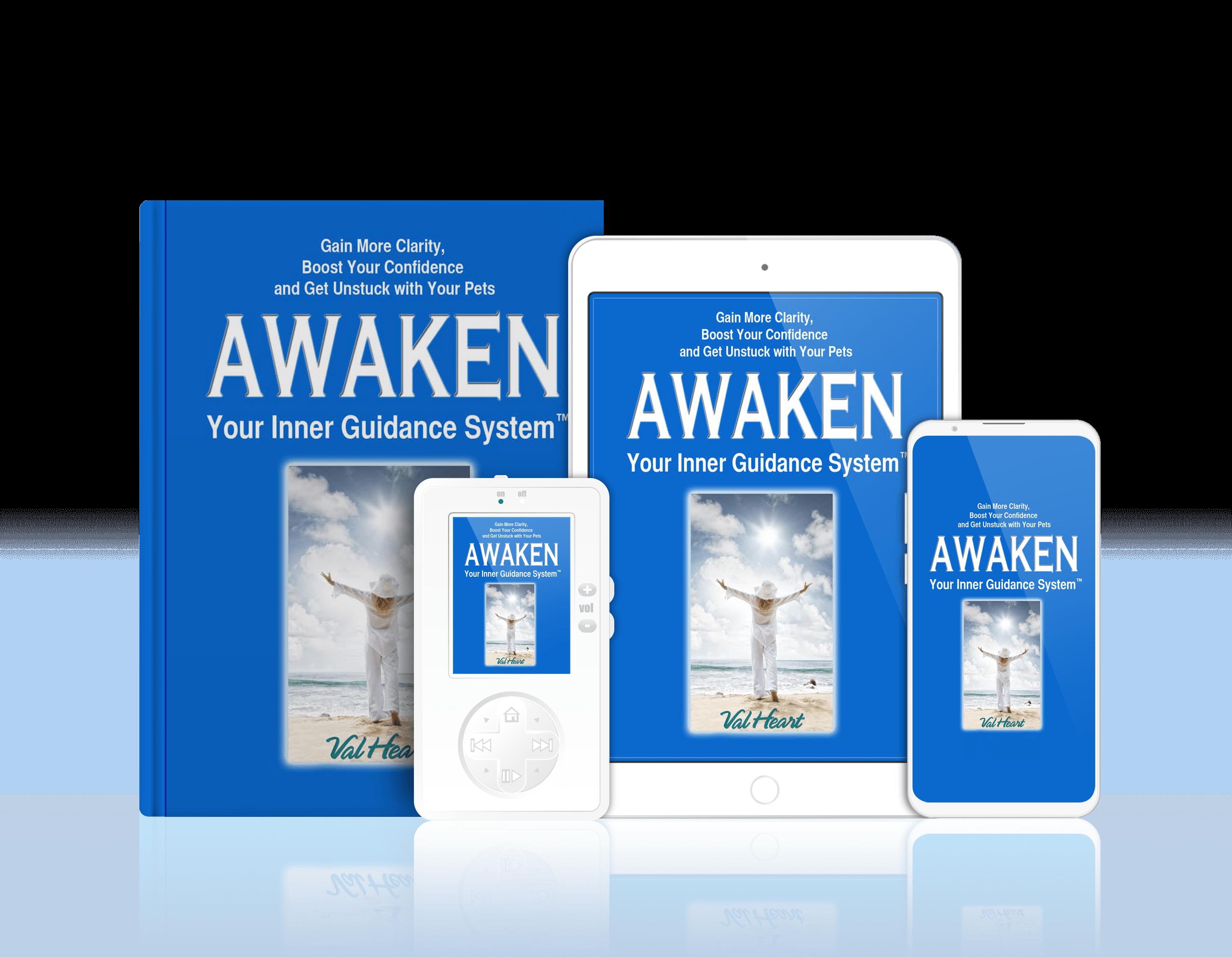 AwakenYourInnerGuidanceSystem without starburst transparent background (1)
